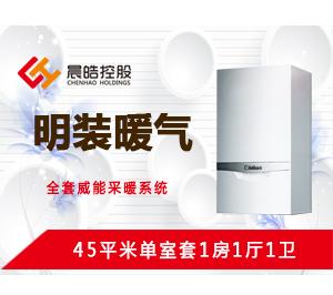 明装暖气-45平米单室套方案