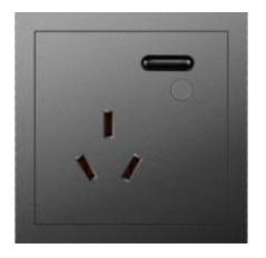 16A 智能插座 U2(计量/智+/灰色)